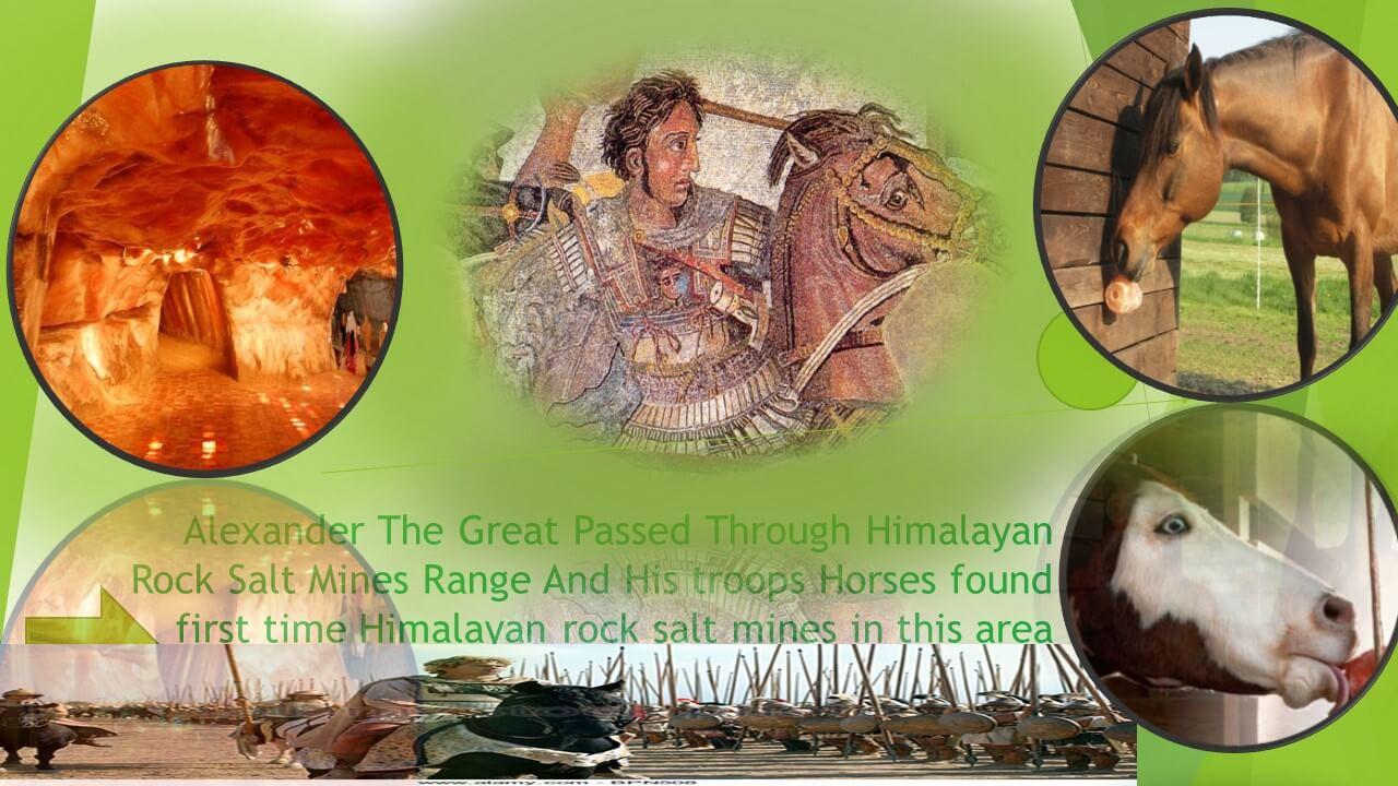 Himalayan-Rock+Salt+History